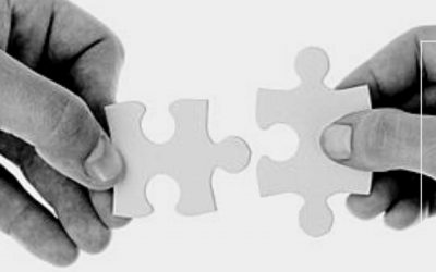 Unleash the Full Potential of Your Partnerships with Our CRO Selection Service